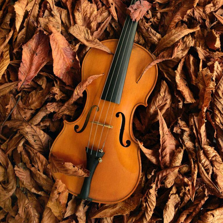 Violin Programación Musical hojas