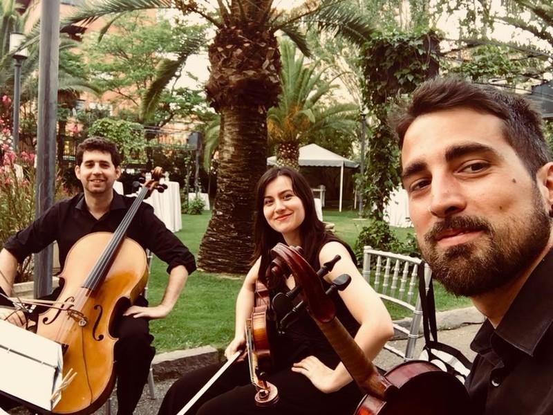 Trio Tono Programación Musical